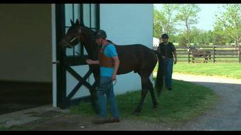 Standardbred Breeders Association of Pennsylvania TV Spot, 'Top Horses' - Thumbnail 3
