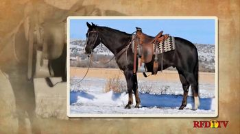 WYO Quarter Horse Sale TV Spot, 'What You're Looking For' - Thumbnail 1