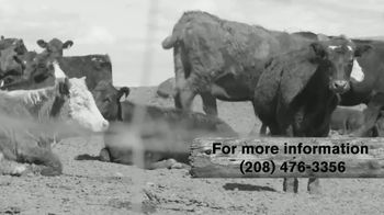 Idaho Beef TV Spot, 'Old Fashioned Way' - Thumbnail 5
