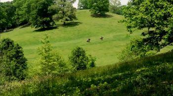 Biltmore Estate TV Spot, 'Summer' - Thumbnail 5