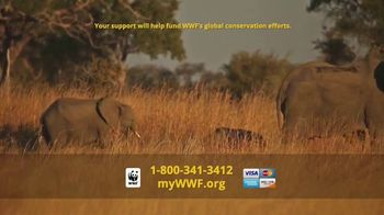 World Wildlife Fund TV Spot, 'WWF on TV: Elephants' - Thumbnail 8