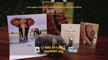 World Wildlife Fund TV Spot, 'WWF on TV: Elephants' - Thumbnail 7