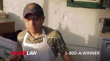 Fieger Law TV Spot, 'Here in America' - Thumbnail 6