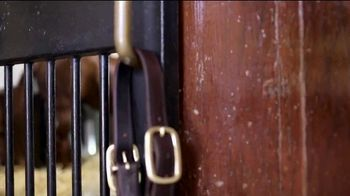 Three Chimneys Farm 2020 Keeneland September Yearly Sale TV Spot, 'Horse of the Year: Gun Runner' - Thumbnail 4