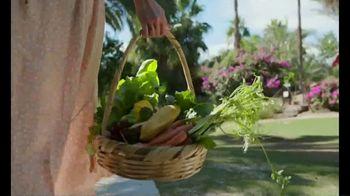 Chosen Foods TV Spot, 'The Avocado, Celebrated!' - Thumbnail 8