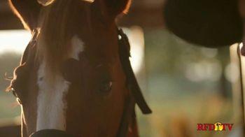 Platinum Performance TV Spot, 'It Starts Within' Featuring Trevor Brazile - Thumbnail 5