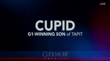 Coolmore America TV Spot, 'Cupid' - Thumbnail 1
