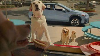 Subaru Crosstrek TV Spot, 'Dog Tested: Lunch Stop' [T1]