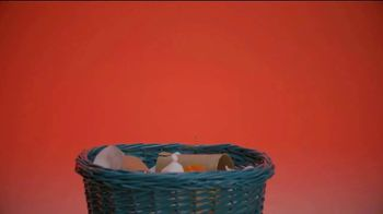 National Association of Boards of Pharmacy TV Spot, 'Dispose of Medications Safely' - Thumbnail 3