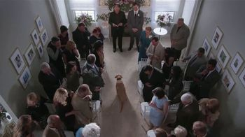 Stanley Steemer 3 Room Carpet Cleaning Special TV Spot, 'Wedding: It Happens' - Thumbnail 4