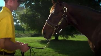 Claiborne Farm TV Spot, 'Runhappy: Addison Run' - Thumbnail 10