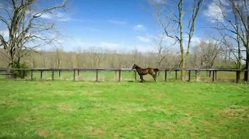 Claiborne Farm TV Spot, 'Runhappy: Addison Run' - Thumbnail 5