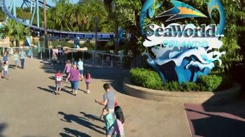 SeaWorld 4th of July Sale TV Spot, 'Feels Amazing: Two Parks' - Thumbnail 2