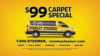Stanley Steemer $99 Carpet Special TV Spot, 'Toby Wedding' - Thumbnail 8