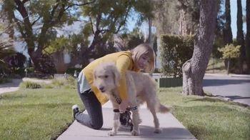 Rachael Ray Nutrish TV Spot, 'Thunder Therapist' - Thumbnail 3
