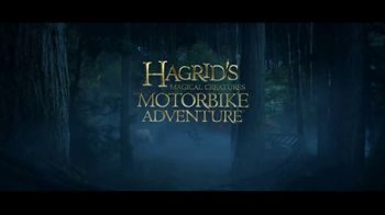 The Wizarding World of Harry Potter TV Spot, 'Hagrid's Motorbike Adventure' - Thumbnail 7