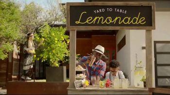 Havertys 4th of July Sale TV Spot, 'Lemonade Stand' - Thumbnail 3