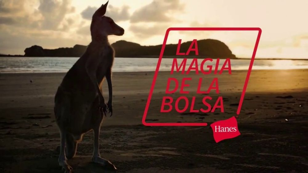 Hanes Comfort Flex Fit TV Commercial, 'La magia de la bolsa'