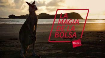 Hanes Comfort Flex Fit TV Spot, 'La magia de la bolsa' [Spanish] - Thumbnail 1