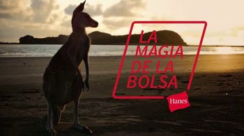 Hanes Comfort Flex Fit TV Spot, 'La magia de la bolsa' [Spanish] - 7550 commercial airings