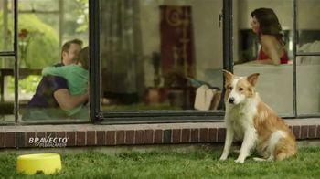 Bravecto TV Spot, 'Parque de perros' [Spanish] - Thumbnail 4