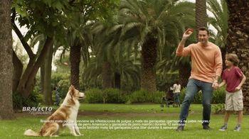 Bravecto TV Spot, 'Parque de perros' [Spanish] - Thumbnail 6