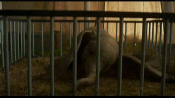 Dumbo Home Entertainment TV Spot