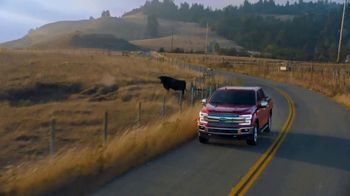 Ford TV Spot, 'Get a Ford: For 115 Years' Song by The Heavy [T2] - 177 commercial airings