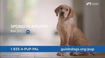 Southeastern Guide Dogs TV Spot, 'Who Knew?' - Thumbnail 6