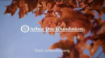 Arbor Day Foundation TV Spot, 'The Big Picture' - Thumbnail 9