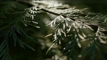 Arbor Day Foundation TV Spot, 'The Big Picture' - Thumbnail 5
