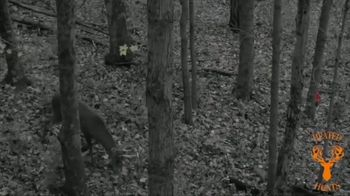 Heated Hunts TV Spot, 'Attract the Deer' - Thumbnail 3