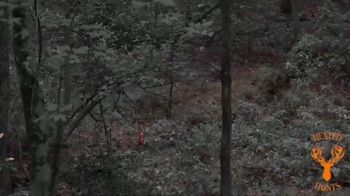 Heated Hunts TV Spot, 'Attract the Deer' - Thumbnail 6