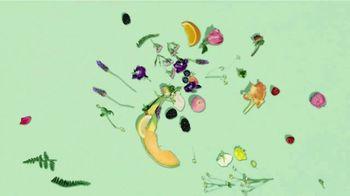 Air Wick Scented Oils TV Spot, 'La esencia de la naturaleza' [Spanish] - Thumbnail 1