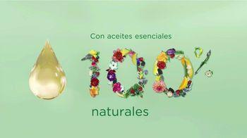 Air Wick Scented Oils TV Spot, 'La esencia de la naturaleza' [Spanish]