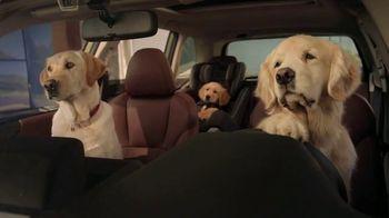 Subaru Forester TV Spot, 'Dog Tested: Honk' [T1] - Thumbnail 3