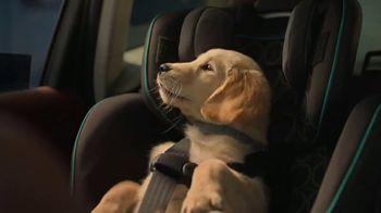 Subaru Forester TV Spot, 'Dog Tested: Honk' [T1] - Thumbnail 5