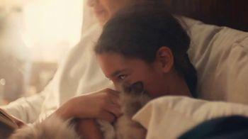 NHTSA TV Spot, 'Pets' - Thumbnail 10