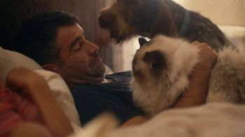 NHTSA TV Spot, 'Pets' - Thumbnail 5