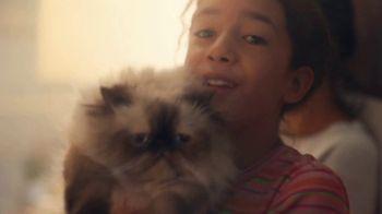 NHTSA TV Spot, 'Pets' - Thumbnail 7
