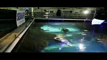 BTN LiveBIG TV Spot, 'Thanks to Minnesota, This Sea Turtle Is Swimming Smoothly' - Thumbnail 10