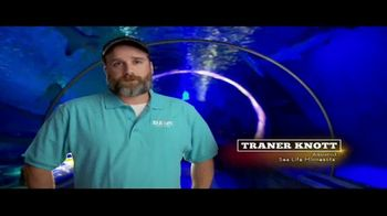 BTN LiveBIG TV Spot, 'Thanks to Minnesota, This Sea Turtle Is Swimming Smoothly' - Thumbnail 3