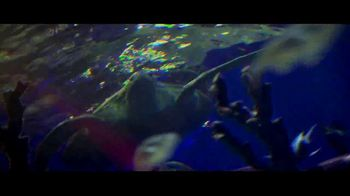BTN LiveBIG TV Spot, 'Thanks to Minnesota, This Sea Turtle Is Swimming Smoothly' - Thumbnail 4