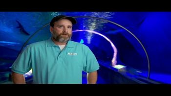 BTN LiveBIG TV Spot, 'Thanks to Minnesota, This Sea Turtle Is Swimming Smoothly' - Thumbnail 9