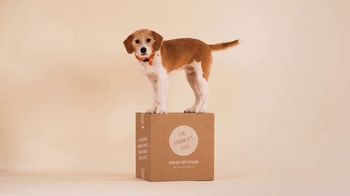 The Farmer's Dog TV Spot, 'Built to Eat: 50 Percent Off First Box' - Thumbnail 5