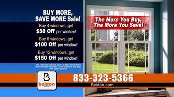 Beldon Windows Buy More, Save More Sale TV Spot, 'Dragging the Ladder Out' - Thumbnail 5