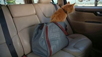 ARCO TV Spot, 'Cat's Out of the Bag'