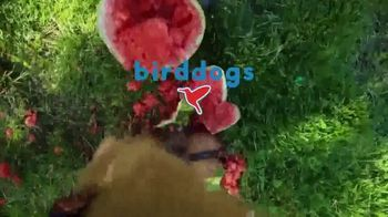 Birddogs TV Spot, 'Game of Thrones' Song by Inner Circle - Thumbnail 7