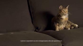 Rent-A-Center TV Spot, 'Stuff Happens: Ashley Sofa' - Thumbnail 2