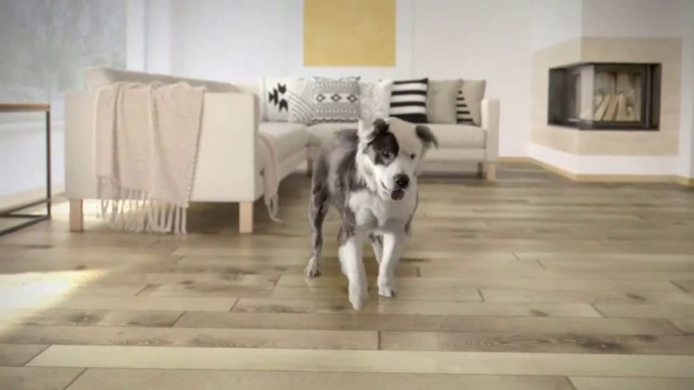 Lumber Liquidators Tv Commercial Picture It See What